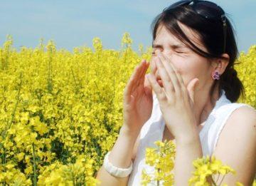 Народное лечение: яичная скорлупа от аллергии