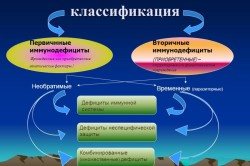 Классификация иммунодефицитов