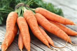 Польза моркови для ускорения месячных