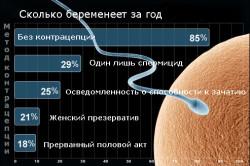Статистика беременности