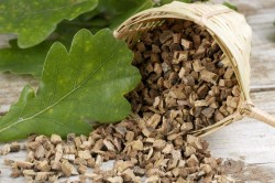 Дубовая кора для лечения гарднереллеза