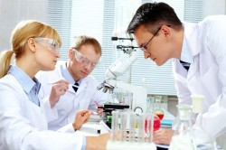 Гистологическое исследование материала