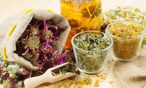 Благоприятное воздействие на мочеполовую систему оказывает применение лекарственных сборов