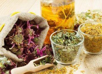 Какие травы для поджелудочной железы эффективны?