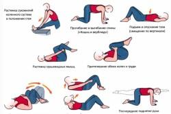 Упражнения для укрепления мышц таза
